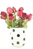 Red rose in jar isolated on the white background — Stock Photo