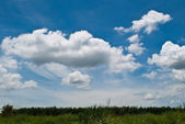 Clouds on the blue sky with the grass field. — Stock Photo