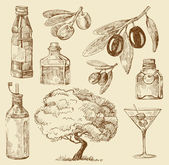 Conjunto doodle azeite — Vetorial Stock