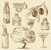Set doodle olive oil — Stock Vector