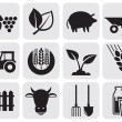 Stock Vector: Farming icons.