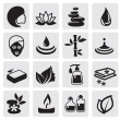 Stock Vector: Spa icons set
