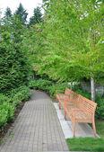 Nature park — Stock Photo
