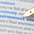 Environment - Dictionary Series — Stock Photo #12368510
