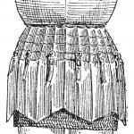 Plateskirt Vintage Gravur — Stockvektor  #10997101