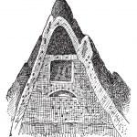 Kupferstich von Termite Nest, vintage — Stockvektor  #10997358