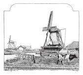 Mills, Zaandam (Holland), vintage engraving. — Stock Vector