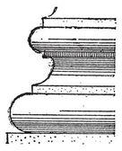 Torus, vintage engraving — Stock Vector