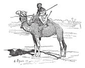 Tuareg, tribe of the Sahara, vintage engraving. — Stock Vector