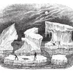 Icebergs, vintage engraving. — Stock Vector #11001702