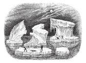 Icebergs, vintage engraving. — Stock Vector