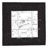 Lyra sterrenbeeld, vintage gravure — Stockvector