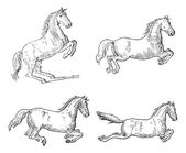 Classical Horse Dressage Movements, vintage engraving — 图库矢量图片
