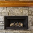 Natural Gas Insert Fireplace with Stone and Wood — Stock Photo #11066475