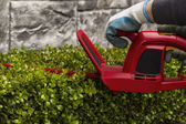 Power Hedger Trimming Hedges — Stock Photo
