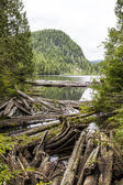 Lac de montagne dans l'état de washington — Photo