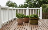 Home Patio Garden — Stock Photo
