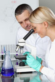 Scientist in chemical lab — Stock Photo