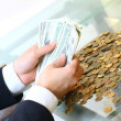 Hands hold money - Stock Photo