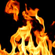 Stock Photo: Fire flame close up