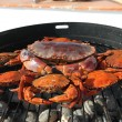 Crab on charcoal grill — Stock Photo #11287995