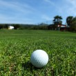 Golf-ball on course — Stock Photo #11288015
