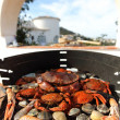 Crabs shrimps on charcoal grill — Stock Photo #11288131