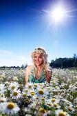 Girl in dress on the daisy flowers field — Foto de Stock