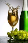 Champagne splash — Stock Photo