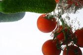 Chapoteo de pepino — Foto de Stock