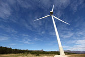 Wind turbines farm in spain — Stock Photo