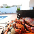 Crabs shrimps on charcoal grill — Stock Photo #11378872