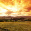 Green meadow under sunset sky with clouds — Stock Photo