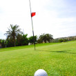 Golf-ball on course - Lizenzfreies Foto