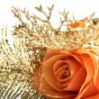 Orange rose — Stock Photo #11579663