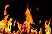 Brand vlam — Stockfoto