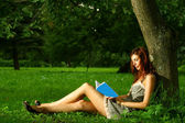 Beautiful woman read book under the tree — Stock Photo