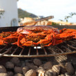 Crab on charcoal grill — Stock Photo #11820843