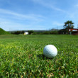 Golf-ball on course — Stock Photo #11820884