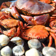 Crabs shrimps on charcoal grill — Stock Photo #11821318