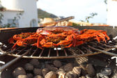 Crab on charcoal grill — Stock Photo
