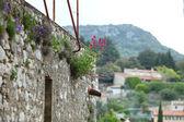 Levandule rostlin v zahradě anglické nádhernej dům — Stock fotografie