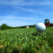 Golf-ball on course — Stock Photo #11955448