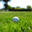 Golf-ball on course — Stock Photo #11955451