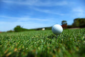 Golf-ball on course — Stock Photo