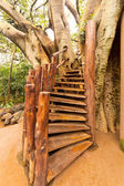 Stairs to the tree house — Stock Photo