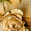 Royalty-Free Stock Photo: Dry rose and old book