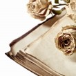 Royalty-Free Stock Photo: Dry roses and old book on isolated white background