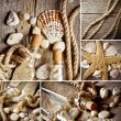 Vintage background with bottles and seashell — Stock Photo