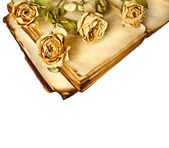 Dry roses and old book on isolated white background — Stock Photo